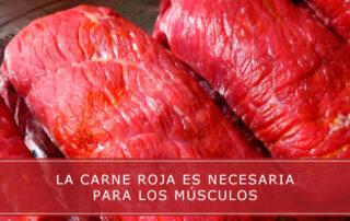 La carne roja es necesaria para los músculos