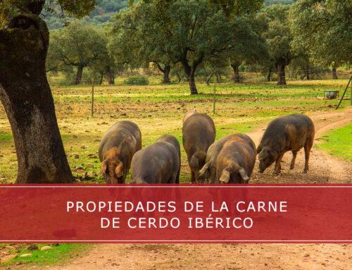 Propiedades de la carne de cerdo ibérico